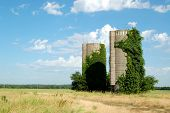 Twin Silos in Field