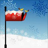 Mailbox With Birds Winter