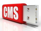 Cms Pen Drive Means Content Management System