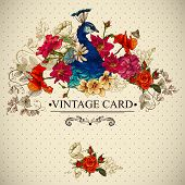 foto of greeting card design  - Floral Vintage Card with Peacock  Vector Design element - JPG