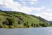 The Mosel River And Its Steep Bank With Vineyards Near Kobern-gondorf In Germany