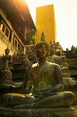 Buddha statues in sunset lights in Gangaramaya temple, Colombo