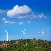 Aerogenerator windmills in the mountain top in a pine tree forest
