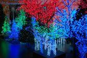 Christmas Electric Illumination