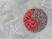 Goji berries and cacao nibs shaped in Yin Yang symbol