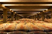 La Rioja Winery Oak Reserva Barrels