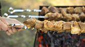 Hand holding skewer with shish kebab.