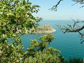 Rocks, bay and foliage, Crimea