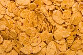 Macro of cornflakes, abstract food background