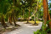 Bungalows on beach and sand pathway - vacation background