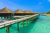 picture of kuramathi  - Water bungalows on a tropical island  - JPG