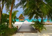 picture of kuramathi  - Diving club and cafe on a tropical island  - JPG
