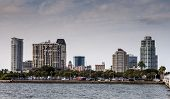 St. Petersburg skyline, Florida