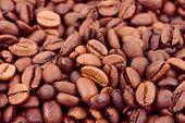 Coffee background - macro of seeds