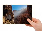Tenerife Canary photography in hand (my photo) isolated on white background
