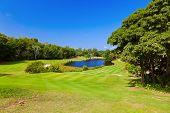 Golf field at island Praslin Seychelles - nature background
