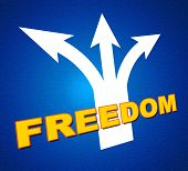 Freedom Arrows Indicates Break Out And Escape