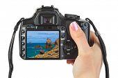 Camera in hand and Tenerife Canary view (my photo) isolated on white background