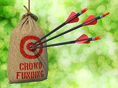 Crowd Funding - Arrows Hit in Red Mark Target.