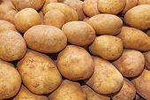 Heap of potato - food background