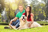 Young couple in a park with a dog on a sunny summer day