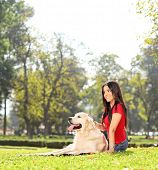 Beautiful girl sitting on the grass with her dog in a park shot with a tilt and shift lens