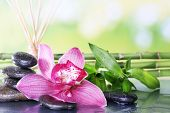 Spa stones, sticks, bamboo branches and lilac orchid on table on natural background