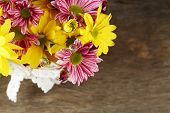 Beautiful chrysanthemum in pot on wooden background
