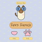 picture of siamese  - Infographic show detail of fawn siamese cat eye color nose color and foot color - JPG