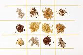picture of sesame seed  - Collection of Cereal Grains and Seeds  - JPG