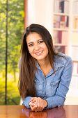 stock photo of denim wear  - portrait of cute young brunette wearing denim shirt - JPG