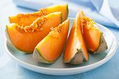 foto of cantaloupe  - cantaloupe melon sliced on blue plate - JPG