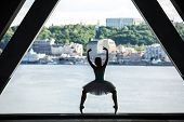 picture of tutu  - Silhouette of graceful ballerina in white tutu on a background of green slopes of the Dnieper Kiev - JPG