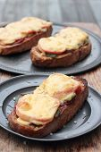 picture of fresh slice bread  - Freshly grilled slice of bread with pickles tomatoes ham and melted cheese - JPG