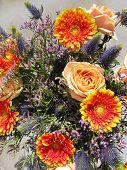 stock photo of fragile  - A bouquet of salmon orange fragile roses and orange yellow gerbera flowers - JPG