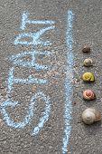 stock photo of snail-shell  - Racing snails closeup. Word start on asphalt ** Note: Shallow depth of field - JPG