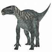 stock photo of herbivorous  - Iguanodon was a herbivorous dinosaur that lived in Europe during the Cretaceous Period - JPG