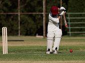 Cricket Backfoot Defense Block