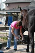 Woman Cleaning Horse Hoof