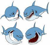 Shark set.