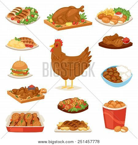 Chicken Vector Cartoon Chick Character