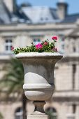 Planted Flowerpot In The Jardin Du Luxembourg In Paris On A Sunny Summer Day, Paris, France, Europe poster