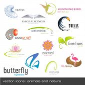 picture of snail-shell  - vector icons - JPG