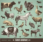 Vector Set: farm Animals - einige Retro-Stil-Bilder