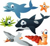 picture of cartoon animal  - vector sea animal set 17 - JPG