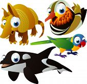 vector animals set 102: armadillo, mandarina duck, parrot, killer-whale