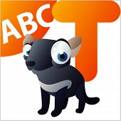 ABC Animals: T is for Tasmanian Devil