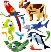 vector animals: parrot, cow, shark, seahorse, dolphin, turtle