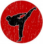 Vector Karate logo