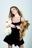 Stylish Girl In Little Black Dress With Two Dog In Hands. Woman With Pet Puppys. Beautiful Woman And poster
